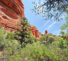 A Hike in the Canyon by Barbara Manis