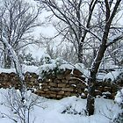 Winter Wall by Vicki Pelham