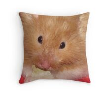 Care for Lettace? Throw Pillow