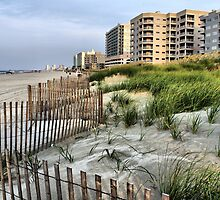 Sand Fence and High Rises by suzannem73