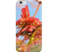 The Red Maple Comes To Life iPhone Case/Skin