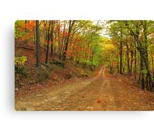 Rainbow Lane Canvas Print