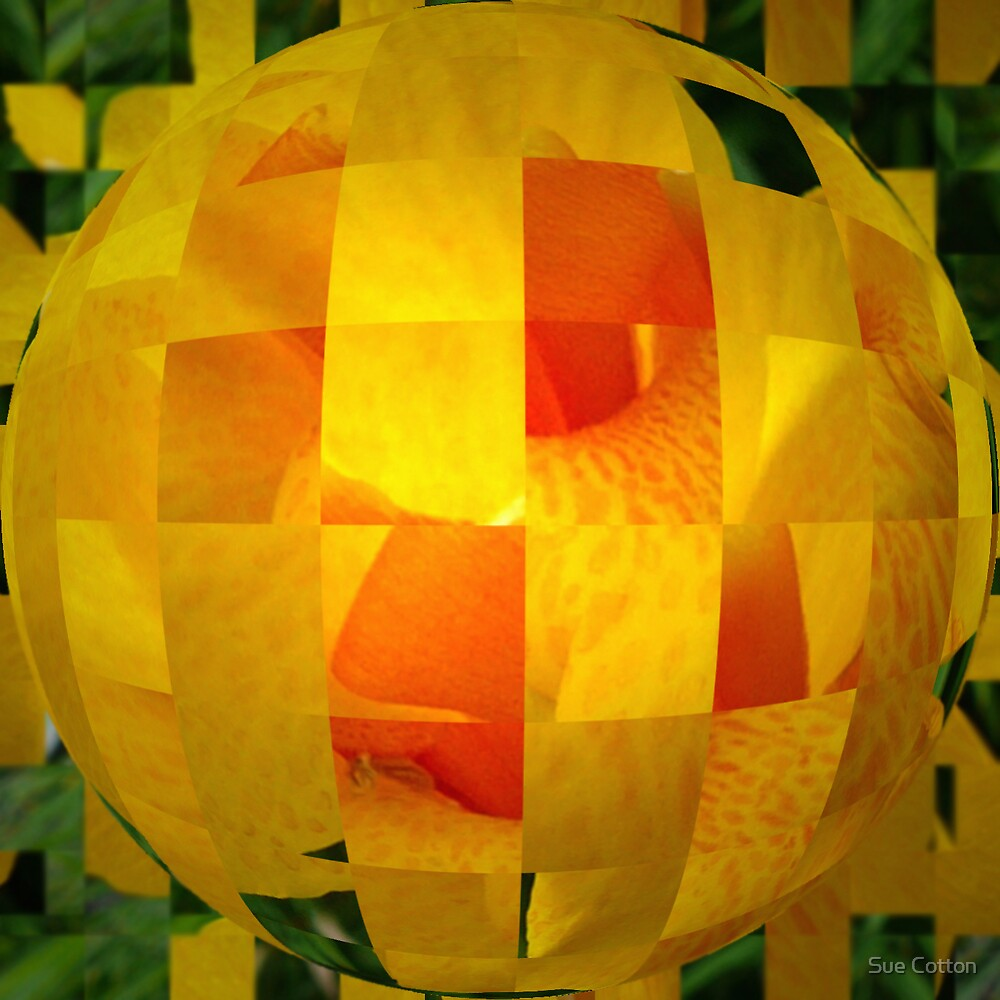 Canna Lantern by Sue Cotton