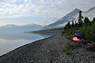 I See Red - Kluane Lake by Barbara Burkhardt