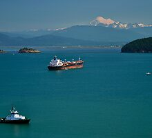 I See Red - Anacortes by Barbara Burkhardt