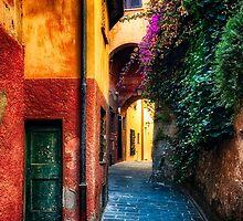 Narrow Street in Portofino by George Oze