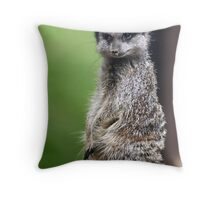 The Wily Meerkat Throw Pillow
