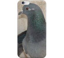 Mask - Love for Pigeons iPhone Case/Skin