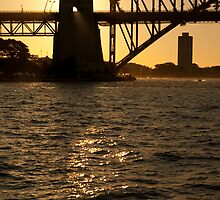 Sydney Harbour Sunset by Steven Arnold