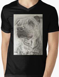 Staffy Mens V-Neck T-Shirt