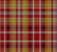 00263 Jacobite Old Sett Tartan  by Detnecs2013