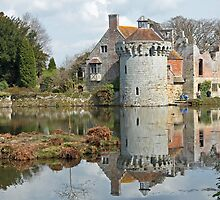 Scotney Castle ruins by Andrew  Marks