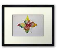 Confusion Explosion  Framed Print