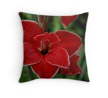 Gladiolus Flower Throw Pillow