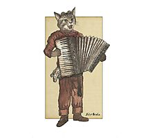Accordion Cat with Goggles and Mask Photographic Print