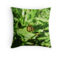 Climbing to new heights Throw Pillow