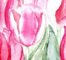 SOFT SHADES OF PINK - ADORABLE PINK TULIPS Sticker