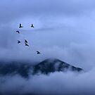 Saint Gabriel Mountains. by Alex Preiss