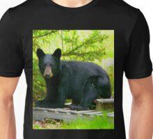 Black Bear Laying Down-Tee Unisex T-Shirt