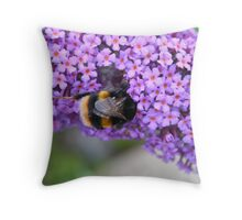 Something sweet for lunch Throw Pillow