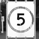 Five is the limit by Maggie Hegarty