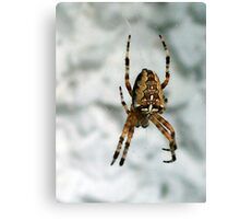It's a spider, man... Canvas Print