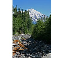 Mt. Rainier at Kautz Creek Photographic Print
