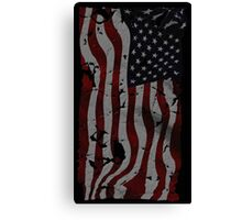 USA!! Canvas Print