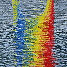 Coloured sails on the water by Fran Webster