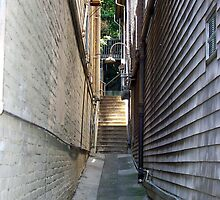 Alley in San Francisco by longaray2