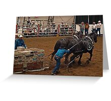 Percheron Pull Greeting Card
