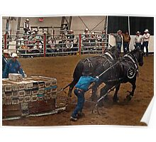 Percheron Pull Poster