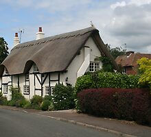 Thatch Roof Cottage, Thurlaston, England by Allen Lucas