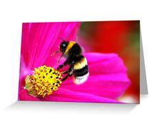 The Mystery Of A Bumblebee's Flight Greeting Card