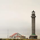 Point Arena Lighthouse, CA by Christine Till  @    CT-Graphics