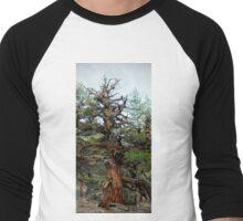 Juniper in the Sierras Men's Baseball ¾ T-Shirt