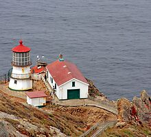 At the edge - Point Reyes Lighthouse, CA by Christine Till  @    CT-Graphics