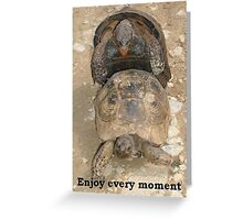 Enjoy Every Moment Tortoise Humour Greeting Card
