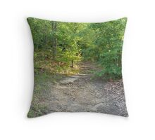 Overlook Point Trail Throw Pillow