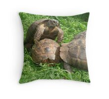 Bullied into Submission - Mating Tortoises Throw Pillow