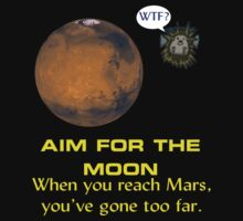 Aim for the Moon. When you reach Mars, you've gone too far. by flippicat