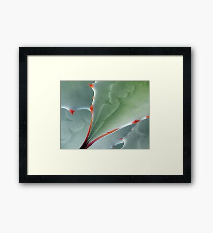 Aerial View Framed Print