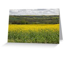 Rapeseed fields Greeting Card