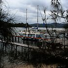 Boat Framed By Branches by Evita