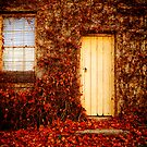 Behind the cream door, Beechworth by Elana Bailey