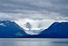 In Ice _ Alaska by Barbara Burkhardt