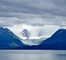 In Ice _ Alaska by Barbara Burkhardt