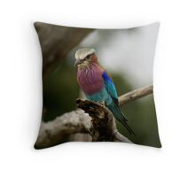 Lilacbreasted Roller Throw Pillow