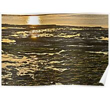 Sunlight over the rock pools and seaweed Poster