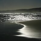 Shoreline by Richard Heath